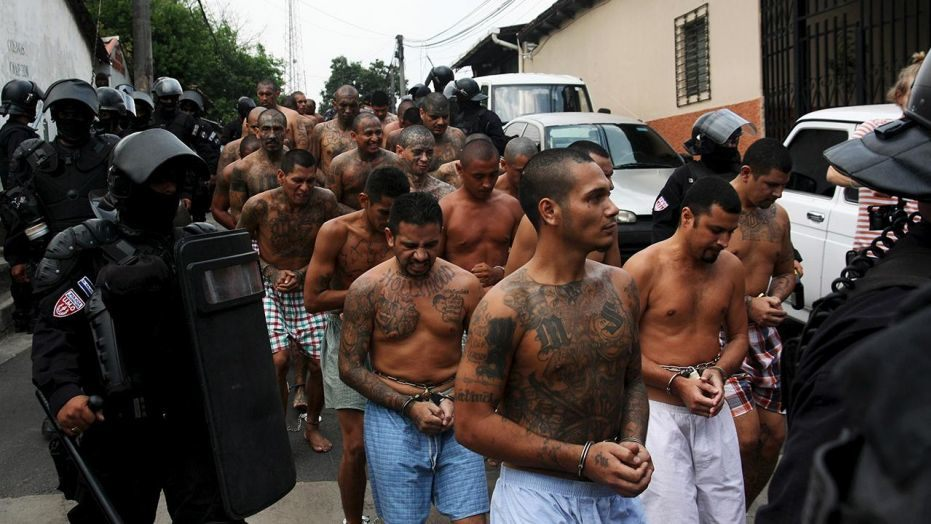 MS-13 crackdown severely reduces gang's violent criminal activity in New York stronghold