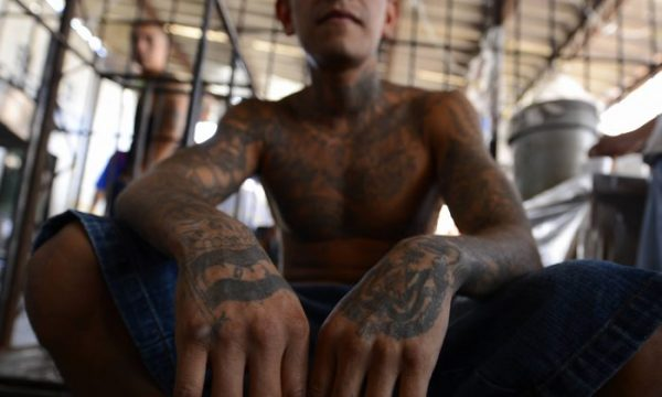 ICE: 6 MS-13 Gang Members, Illegal Immigrants Involved in Fatal Stabbing