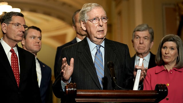 McConnell: Battle for control of the Senate will be a 'dog fight'