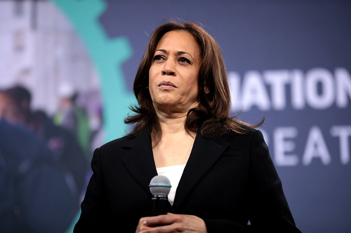 Kamala Harris Catches Heat Asking People to Help Small Businesses After Urging People To Donate Bail Money for Rioters and Looters Only Months Ago