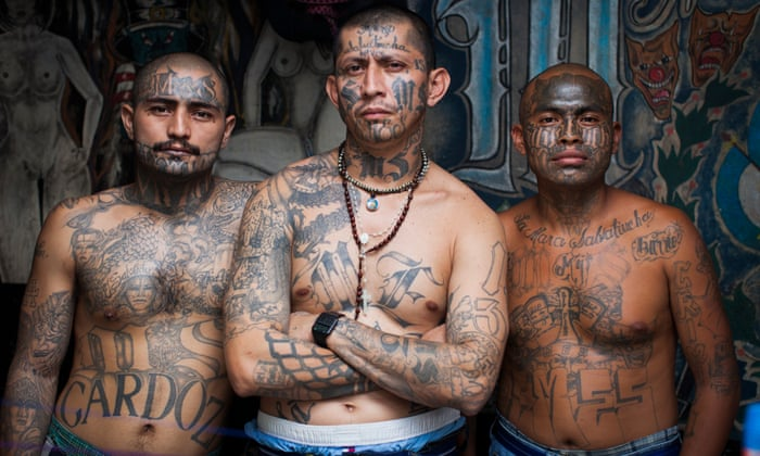 Democrats Vote to Give MS-13 Gang Members Government Benefits and Amnesty
