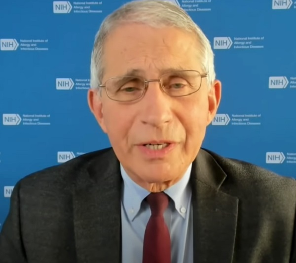 Dr. Fauci Says No Plan For Federal Mandate on Coronavirus  Vaccine Passport Then Sends Wink and a Nod At Woke Corporations