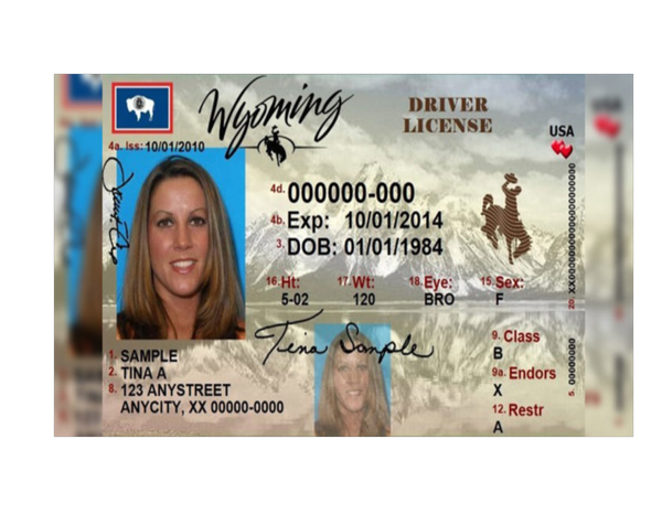 Wyoming Governor Signs Election Integrity Bill Requiring Photo ID to Vote Into Law